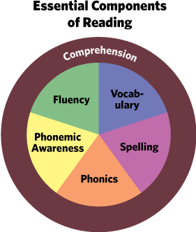 Essential Components of Reading (With Spelling)