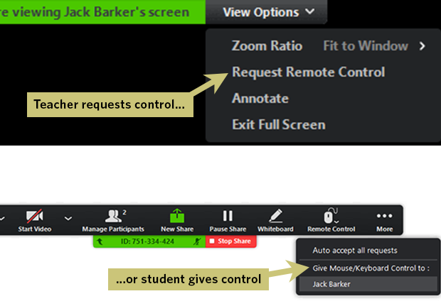 Controlling another screen in Zoom